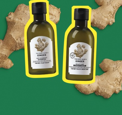 Ingveri šampoon + palsam 400ml = -40%