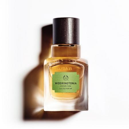Widdringtonia parfüümvesi