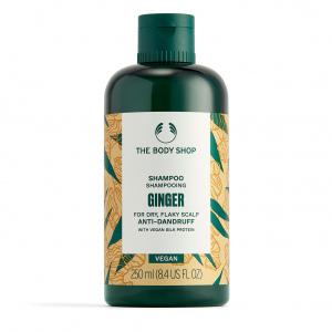 Ingveri šampoon